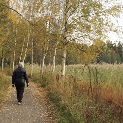 Autumn walk with my Mom.