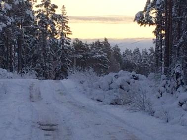 Snowscape in Finland 2015